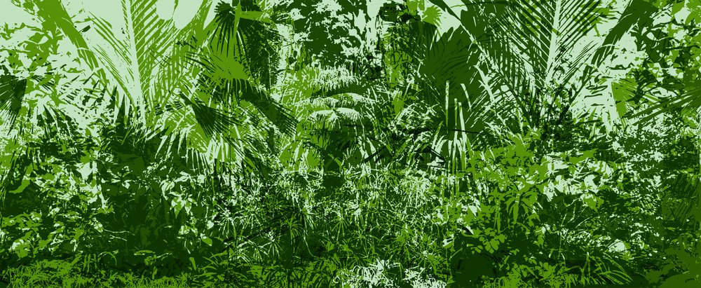 jungle verte b